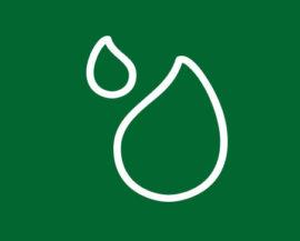 oli vegetali